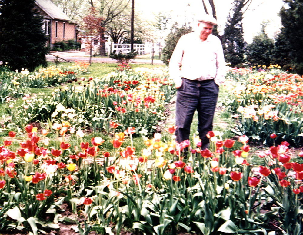 1938 Ed Meyer Sr looking over tulips and Iris garden