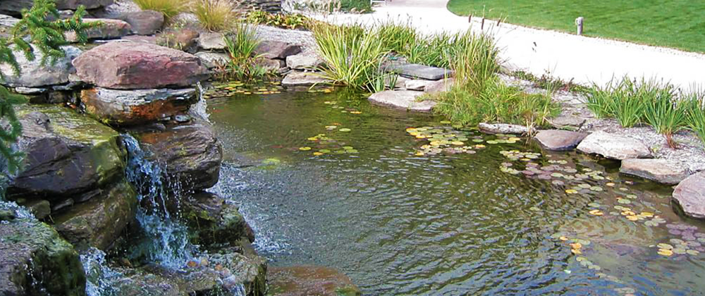 How to Prepare Your Garden Pond for Winter photo