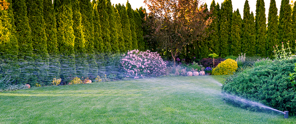 The Best Way to Water Your Landscape photo