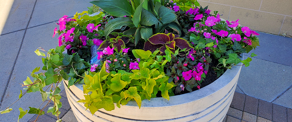 meyer-landscape-design-garden-art-large-planter