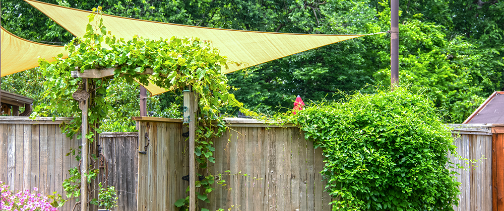 meyer-landscape-shade-for-the-patio-shade-sails