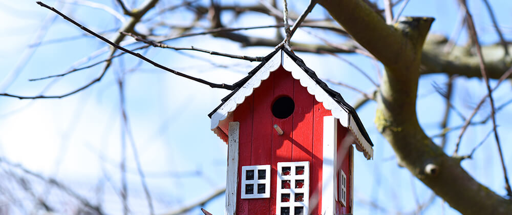 meyer-landscape-help-birds-winter-red-birdhouse