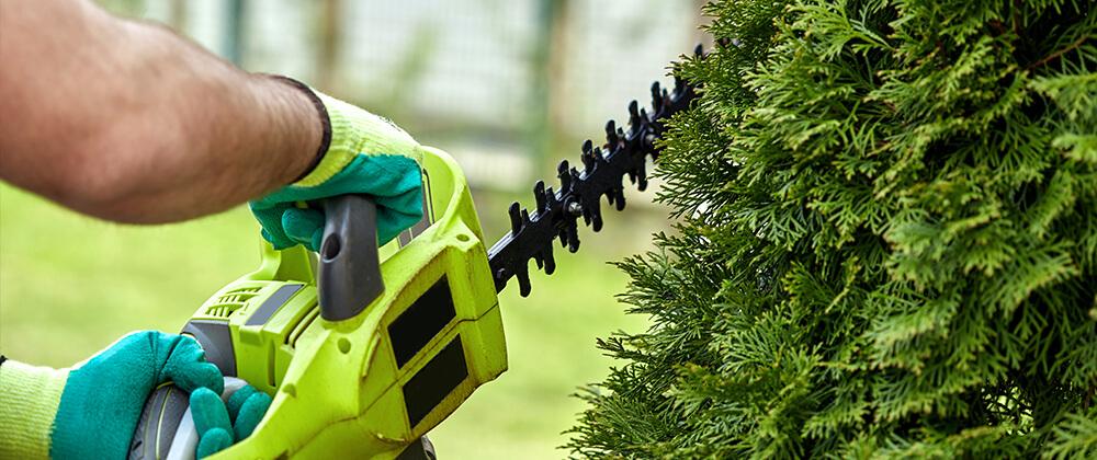 meyer landscape april gardening checklist pruning saw evergreen