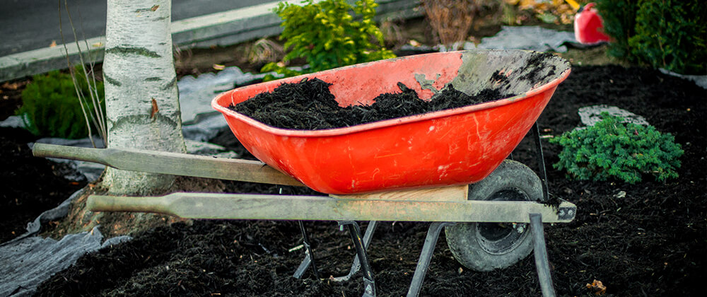 meyer landscape april gardening checklist wheelbarrow soil planting shrubs
