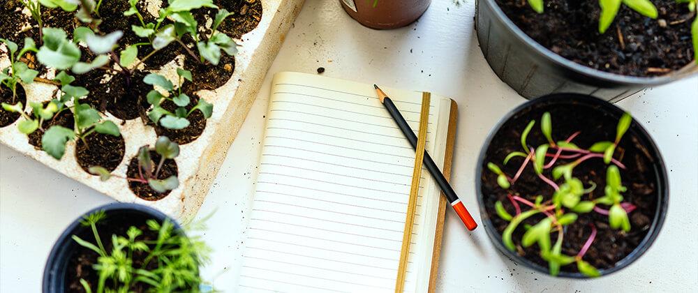 meyer landscape seed starting or greenhouse plants indoor seeds notebook