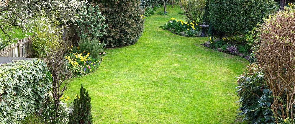 A Crash Course in Garden Designing for Beginners photo