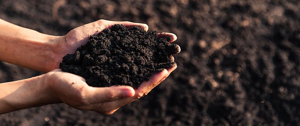 Get the Dirt: Understanding Your Soil Type photo