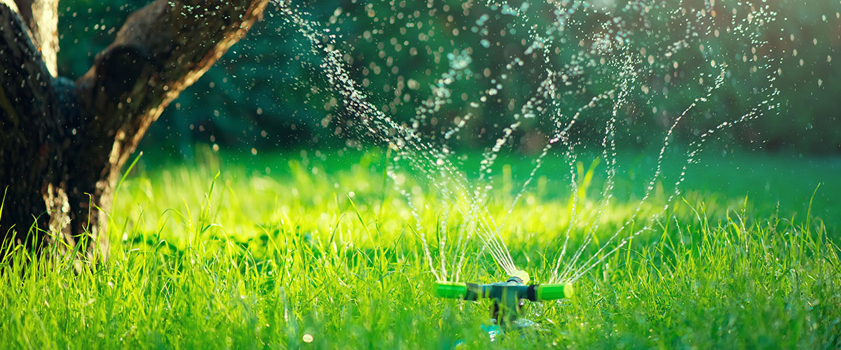 watering property with a sprinkler